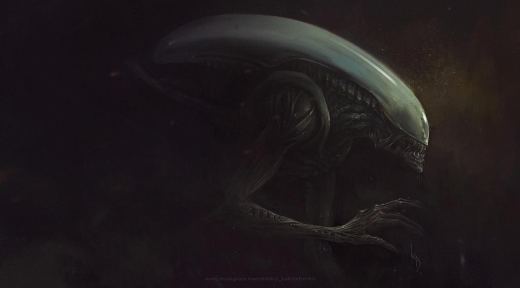 Xenomorph by dkalinichenko