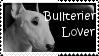 Bullterier lover - stamp