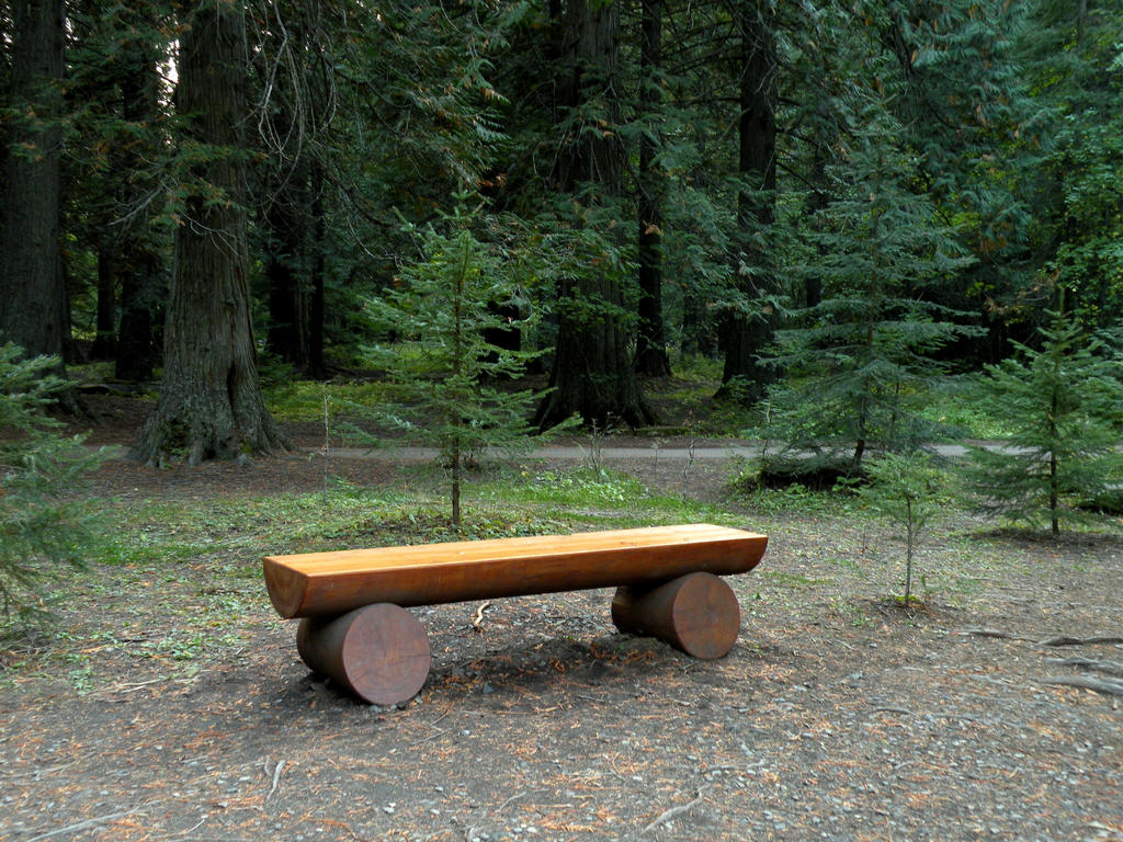 forest bench stock by rocamia stock on deviantart