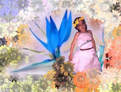 Julie Fairy by nogggin