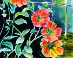 Petunias by nogggin