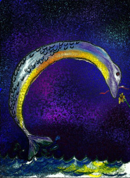 Eel by nogggin