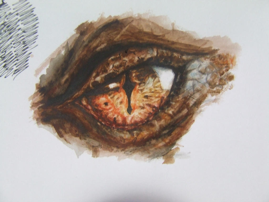 Smaug's eye by Gingerbreadforme