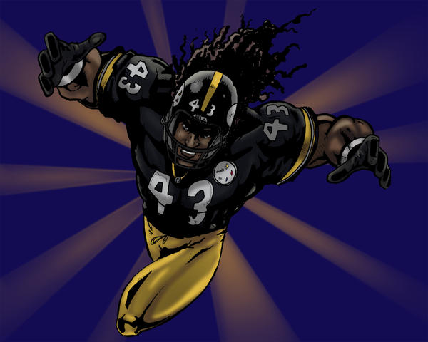 For all you Steeler Fans by artsox