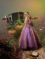 Cinderella by zfbaser