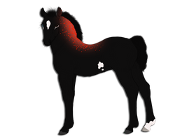 ID# 1585 by AutumnCreekFarms