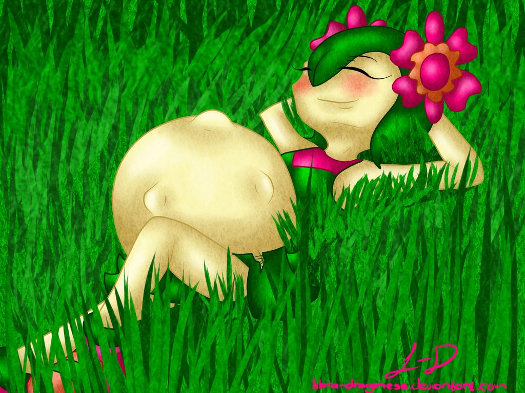 ::P.Com:: Sunbathing by Libra-Dragoness