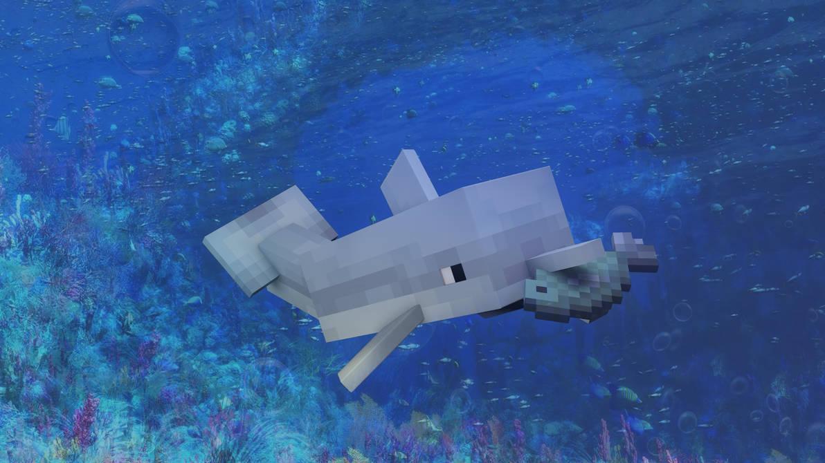 minecraft dolphin update release date