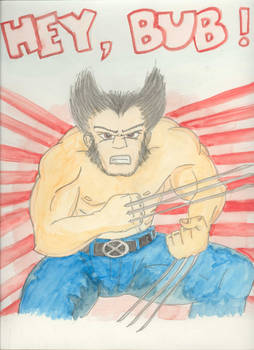 Wolverine Paints