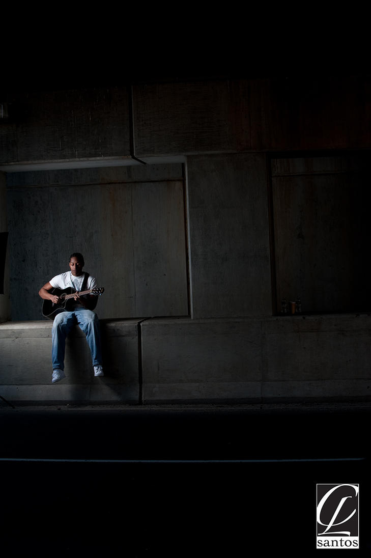 Michael J Dzienis a premier Professional Wedding and Portrait Photographer ...