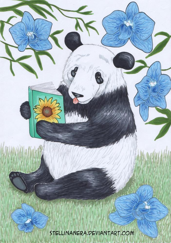 Panda chan by stellinanera