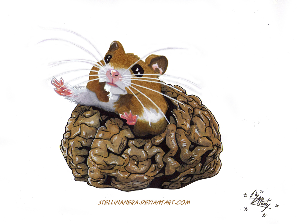 Commission Hamster coming out of the brain by stellinanera