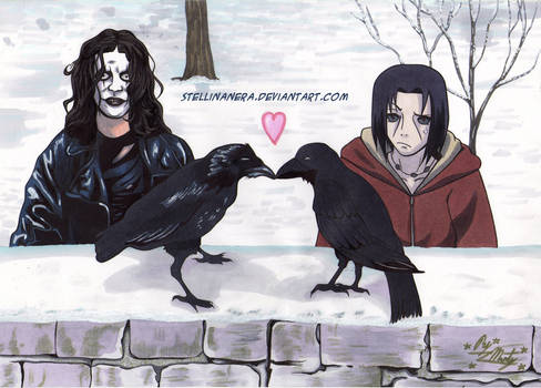 The crows in love