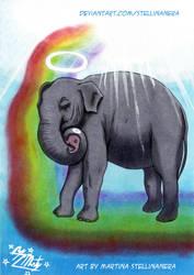 Elefantessa con il suo piccolo