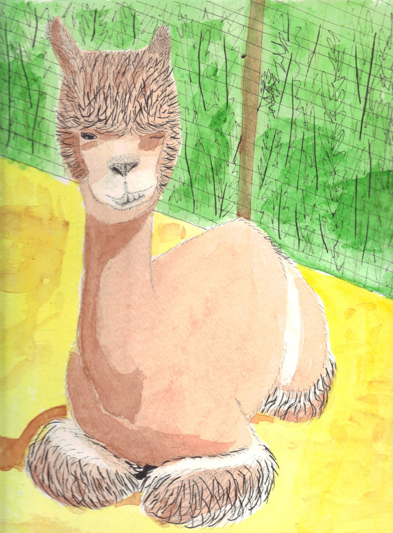 Alpaca by Cerra-Angel