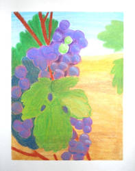 Grapes by Cerra-Angel