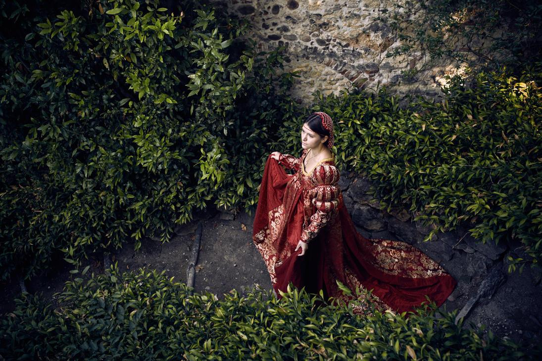 Renaissance dress by daguerreoty-pe