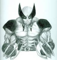Wolverine by ArtisticSweetie
