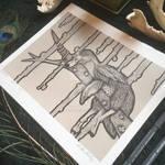FOR SALE - Dreamer - Print