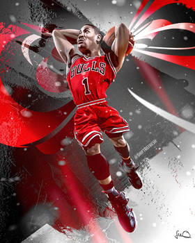 Derrick Rose Bulls Wallpaper NBA Art