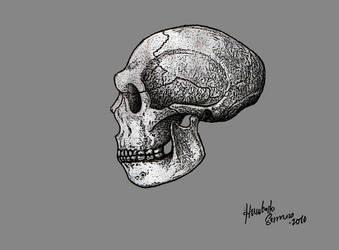 Homo neardenthalensis by MunenMusho