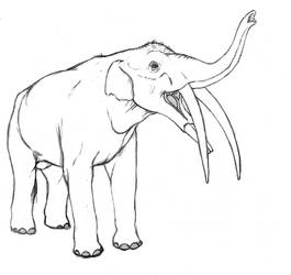Gomphotherium angustidens 3