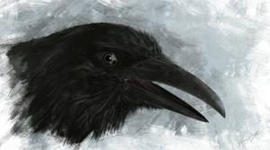 Raven by VITOGH