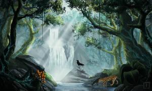 Gift: Rainforest Fantasy
