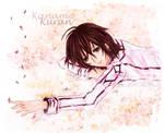 Vampire Knight - Kaname