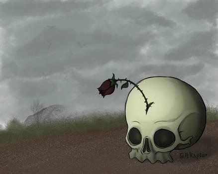 Rose Angler