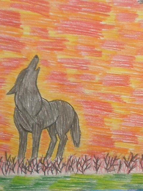 wolf ID by Yaguchi-Mari