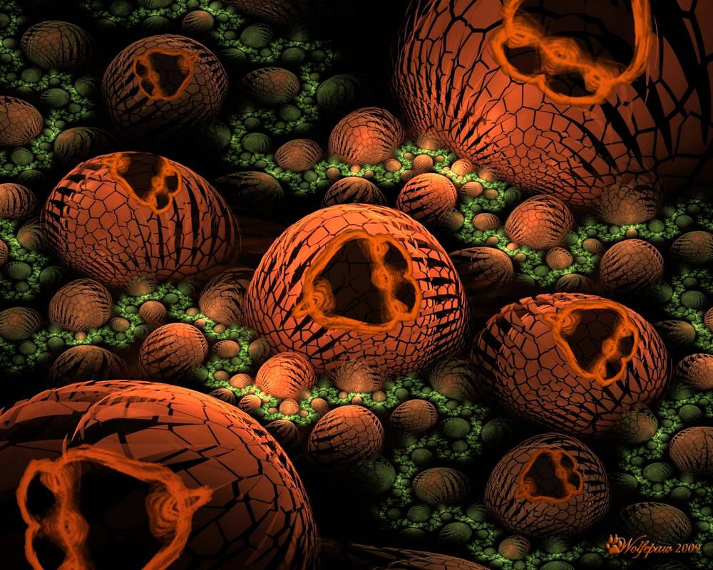 The Happy Pumpkin Patch