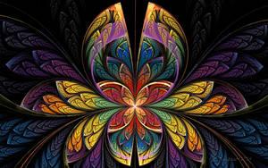 Butterfly Splits by wolfepaw