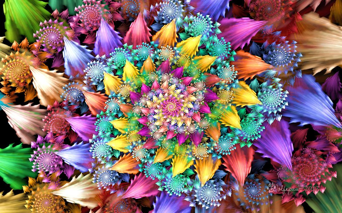 Rose Rosoni Spiral by wolfepaw