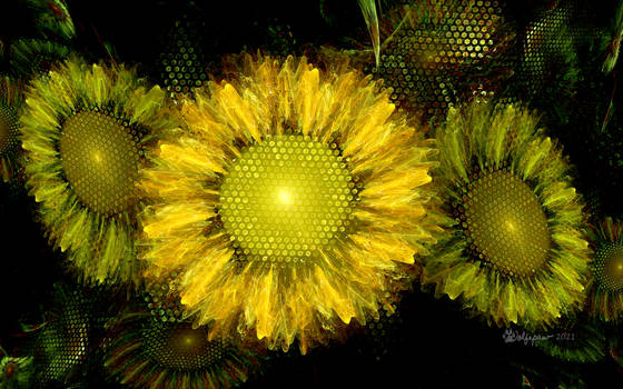 Sunflowers for Lynda