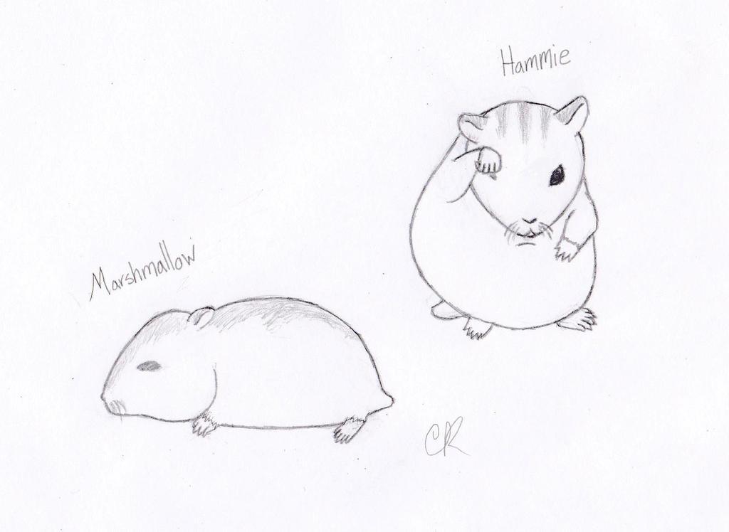 Ham Hams by CatsofSin