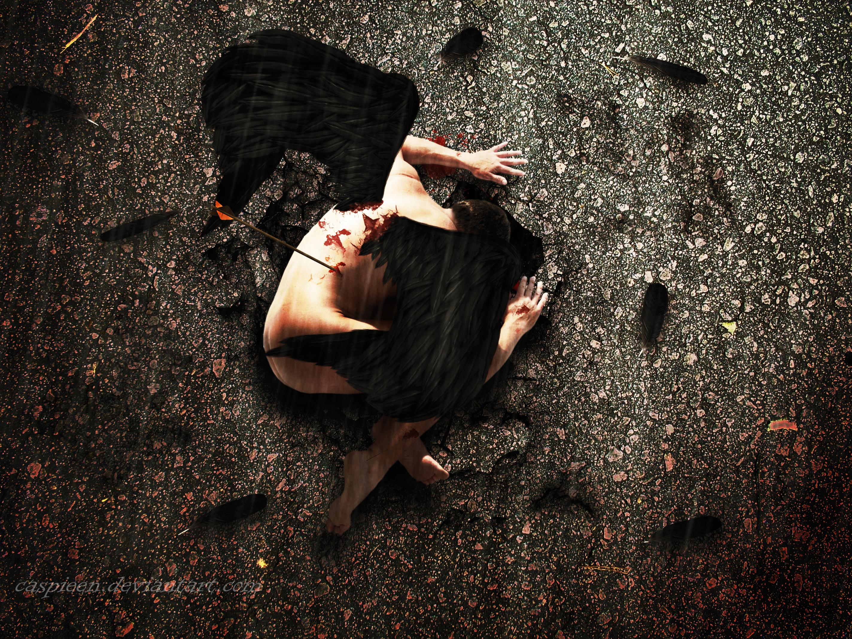 Fallen Angel vol.2 by Caspieen