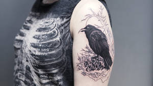 WIP raven tattoo by sHavYpus