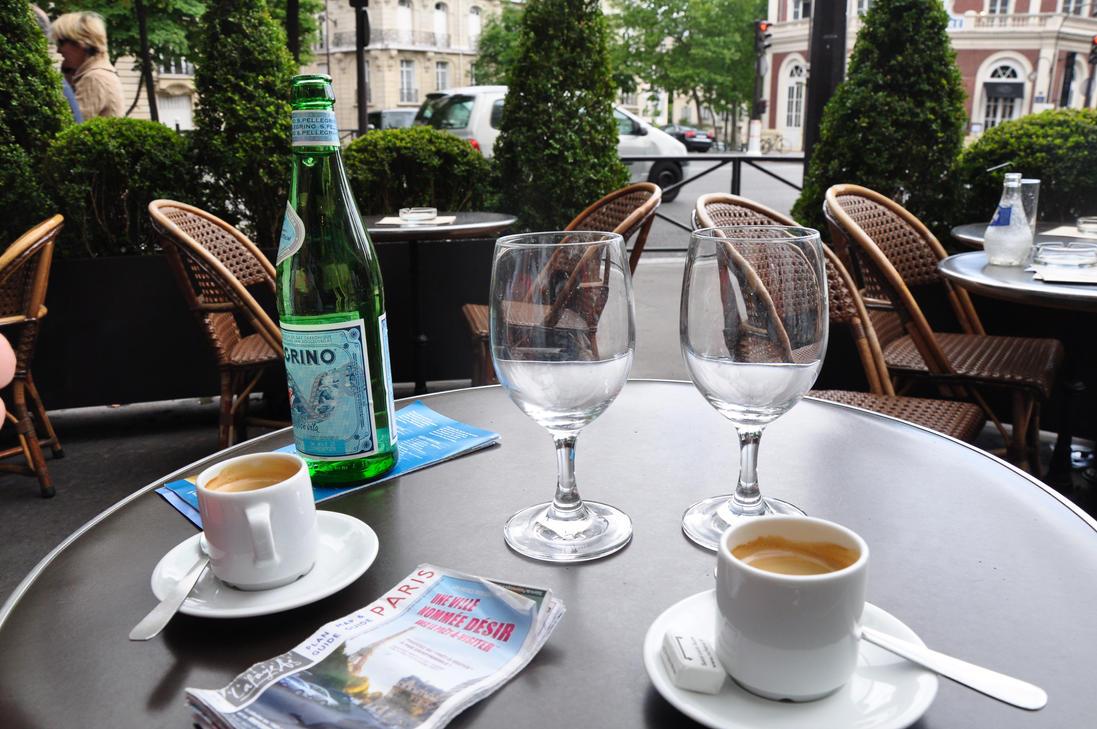 Chat Cafe Paris