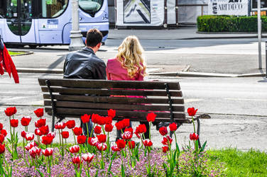 Zagreb Lovers and Flowers - revisited by Rikitza