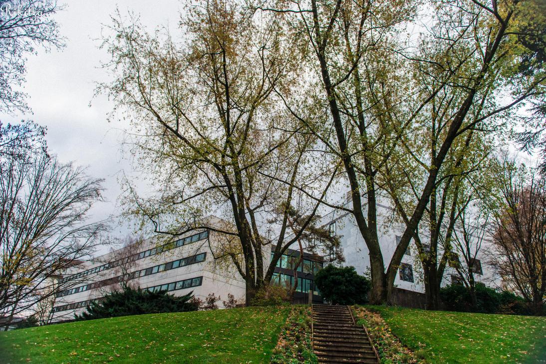 Museum in Geneva by Rikitza