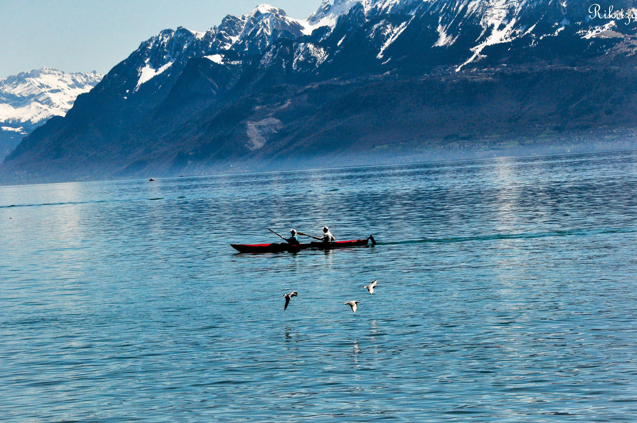 Kayak and birds on Geneva lake by Rikitza