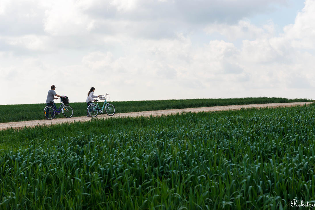 Wheat and people by Rikitza