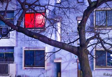 Red window in Kyoto - to all my DA friends by Rikitza