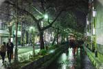 Night promenade in Kyoto