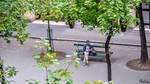 Lost in Paris by Rikitza