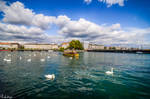 Clouds and swans in Geneva - to Ayhan