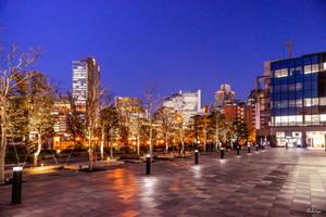 evening in Osaka by Rikitza