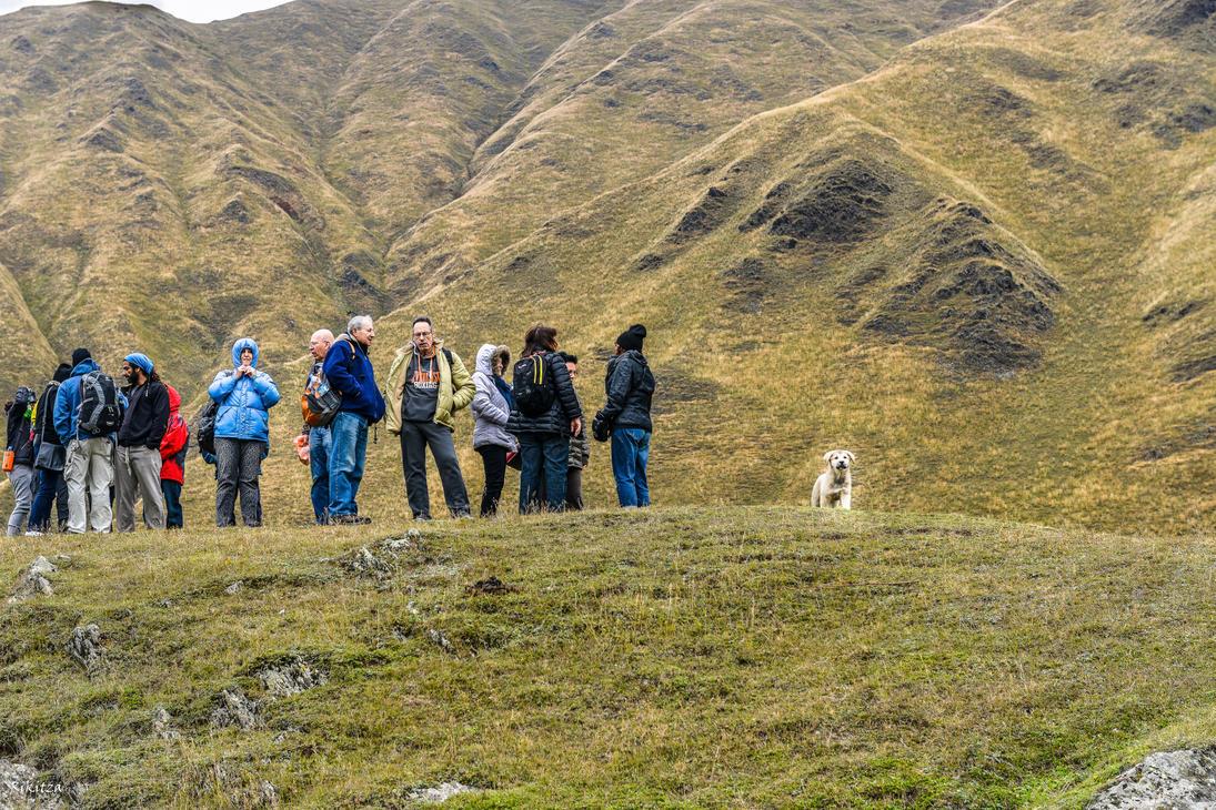 Tourists and dog in Svaneti by Rikitza
