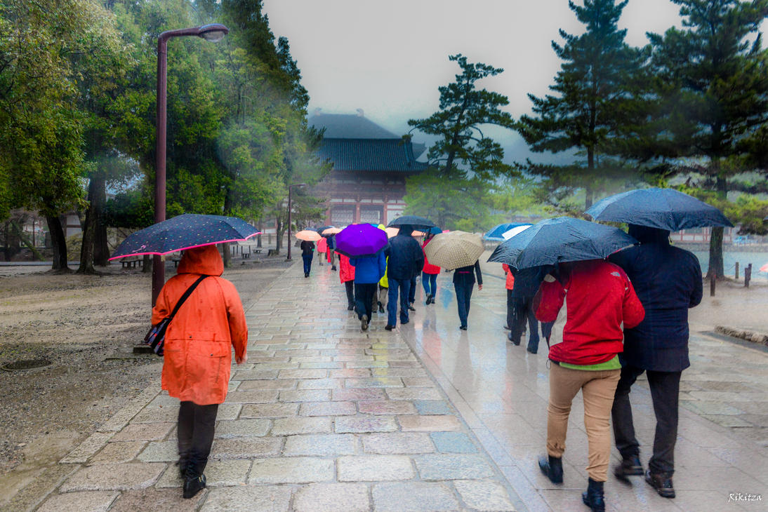 Umbrellas procession at Nara by Rikitza